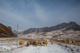 Vindparken i Chicheng ligger langt fra folk. Det er uvisst hvor mye kraft som når ut på sentralnettet.